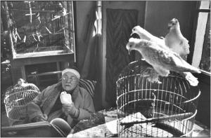 Matisse en su estudio (1944)